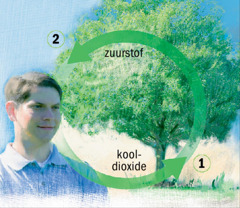 Zuurstof- en koolstofkringlopen