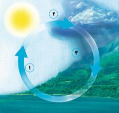 چرخهٔ آب
