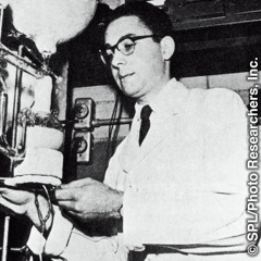Stenli Miler, 1953.