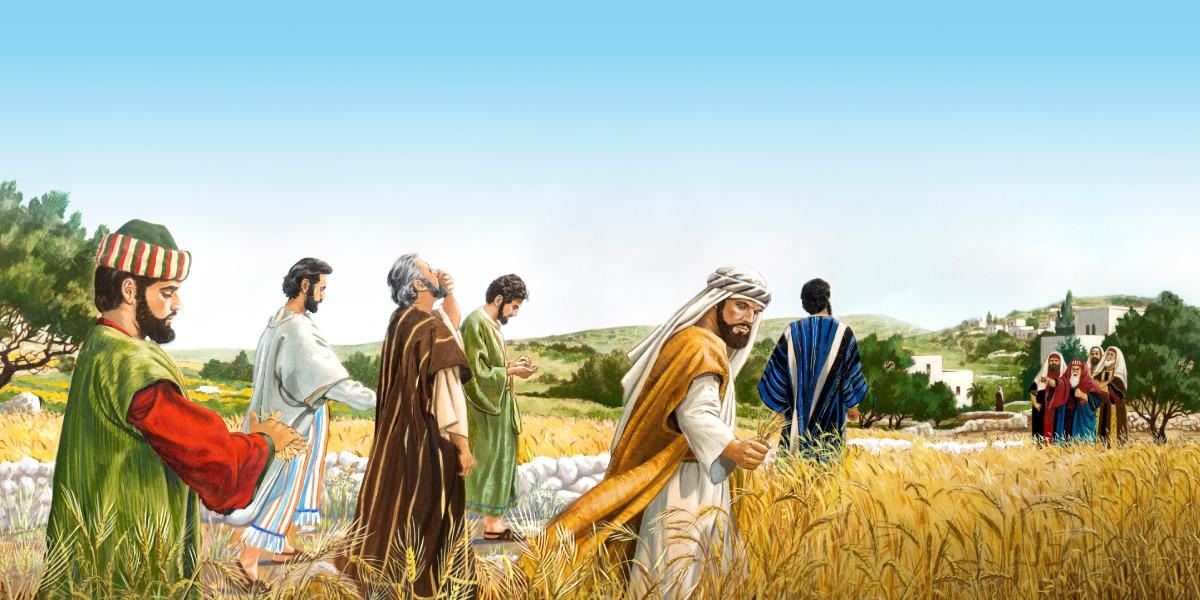Resultado de imagen para Jesús espigas de trigo