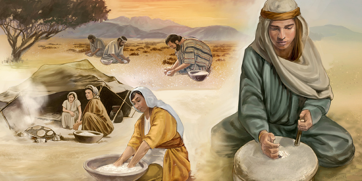 "Jesus—""The Bread of Life"" | Life of Jesus"