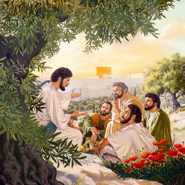 Los apóstoles piden una señal (Mateo 24:3-51) | La vida de Jesús
