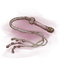 A whip for scourging