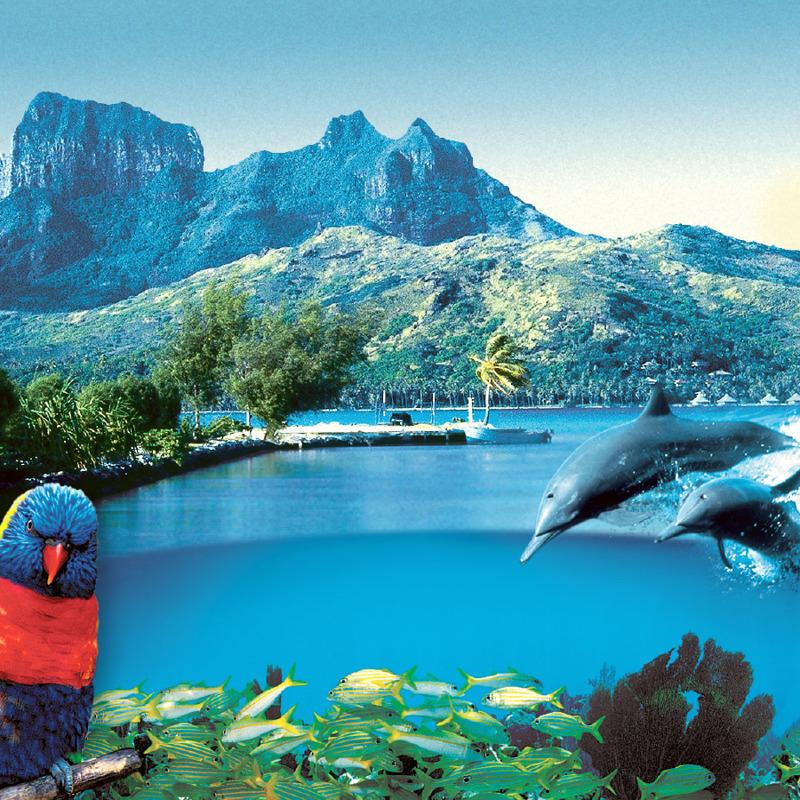 La creación de Dios: montañas, un lago, peces, pájaros, delfines y árboles