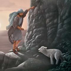 Fjárhirðir finnur týnt lamb á klettasyllu.