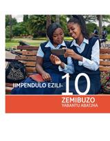 Isigubuzeso sebhrotjha ethi, Iimpendulo Eziyi-10 Zemibuzo Ebuzwa Babantu Abatjha