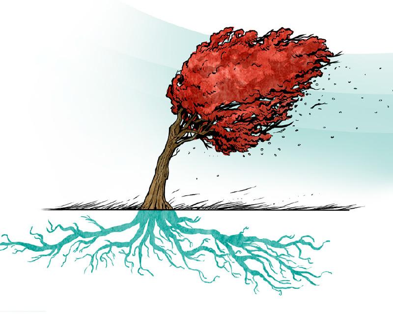 شجرة قوية تبقى ثابتة في وجه الرياح القوية