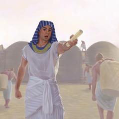 يوسف يوجه العمال الذين يجمعون الطعام