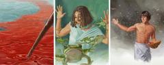 मिस्र पर आए दस कहर में से तीन कहर हैं: नील नदी में खून, मेंढक और मच्छर