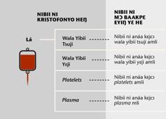 Lá, nibii titrii ejwɛ ni feɔ laì, kɛ nibii ni anaìa kɛjɛɔ nibii titrii ejwɛ ni feɔ laì lɛ amli