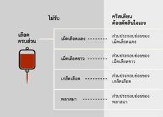 เลือด ส่วนประกอบหลัก 4 อย่างของเลือด และส่วนประกอบย่อยของเลือด