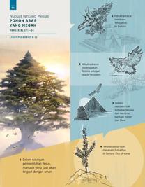 Nubuat tentang Mesias—Pohon Aras yang Megah