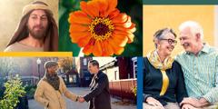 Bildcollage: 1.Der Priester Esra. 2.Eine Blume. 3.Zwei Zeugen Jehovas unterschiedlicher Hautfarbe gehen zusammen in den Predigtdienst. Sie geben sich die Hand und lächeln. 4.Ein glückliches älteres Ehepaar, das sich an den Händen hält, lächelt sich an.