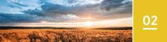 2.lekcia: slnko vychádza nad rozľahlým pšeničným poľom