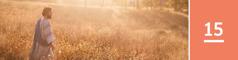 Lección 15. Jesús caminando por un campo de cereales.