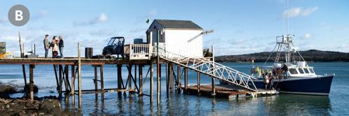 B. Pareittain työskentelevät Jehovan todistajat saarnaamassa kalastajille satamassa Yhdysvalloissa.