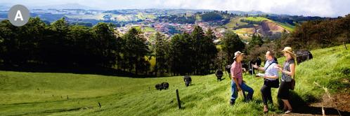 A. Dvojica Jehovových svedkov zvestuje mužovi na trávnatom svahu vKostarike