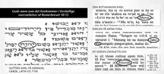 Guds navn i forskellige bibler