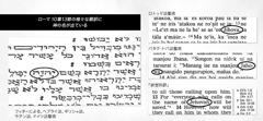 聖書本文に出てくる神の名前