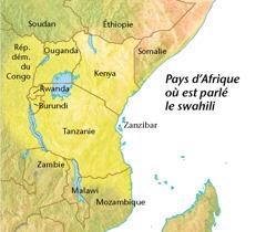 Carte des pays d'Afrique où est parlé le swahili