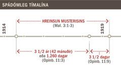 Tímalína sýnir hreinsun musterisins frá árinu 1914 til 1919.