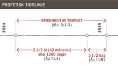 Tidslinje for rensingen av templet fra 1914 til 1919