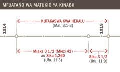 Kutakaswa kwa hekalu kuanzia mwaka wa 1914 hadi 1919