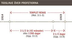 Tidslinje över renandet av templet från 1914 till 1919.