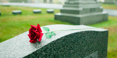 A red rose on top of a tombstone