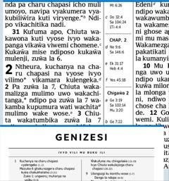 Chithuzithuzi pa peji12