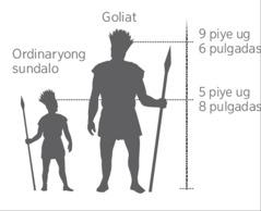 Gitas-on sa higanteng si Goliat gikomparar sa ordinaryong sundalo