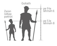 Minganpi Goliath i a tung le zaran ralkap pakhat i a tung tahchunhmi