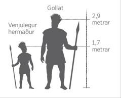 Mynd sem sýnir stærð Golíats samanborinn við hermann í meðalhæð.