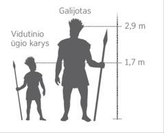 Schema, vaizduojanti Galijotą ir vidutinio ūgio karį