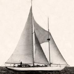 The schooner Sibia