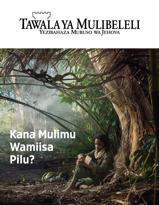 Magazini ya Tawala ya Mulibeleli, No. 3, 2018 | Kana Mulimu Wamiisa Pilu?