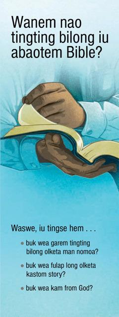 Wanem Nao Tingting Bilong Iu Abaotem Bible?