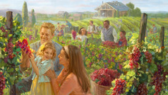 Families of various races enjoy harvesting grapes in the new world