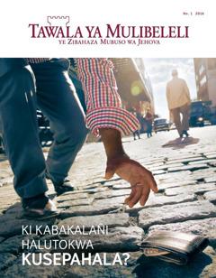 Likepe la fahalimu la magazini ya Tawala ya Mulibeleli ya January 2016 | Ki Kabakalañi Halutokwa Kusepahala?