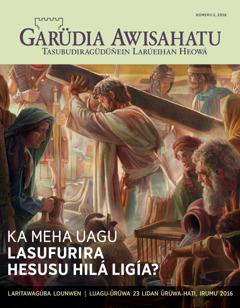 Tidáü Garüdia Awisahatu, númeru 2, 2016 | Ka mehauagu lasufurira Hesusu hilá ligía?