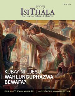 IsiThala, No. 2 2016 | Kubayini UJesu Wahlunguphazwa Bewafa?