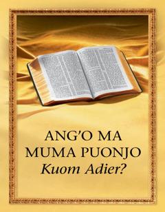 Ang'o ma Muma Puonjo Kuom Adier?