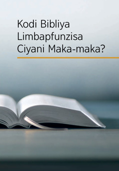 Kodi Bibliya Limbapfunzisa Ciyani Maka-maka?
