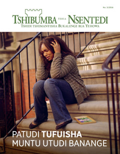 Tshibumba tshia Nsentedi No. 3 2016   Patudi tufuisha muntu utudi banange