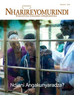 Nharireyomurindi Nhamba 5 2016 | Ndiani Angakunyaradza?