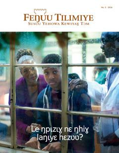 Feŋuu Tilimiye No. 52016 | Le ŋpɩzɩɣ nɛ ŋhiɣ laŋɩyɛ hɛzʋʋ?