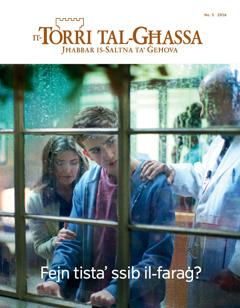It-Torri tal-Għassa Nru.5 2016 | Fejn tista' ssib il-faraġ?
