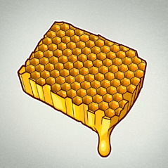 Un panal de mel