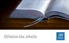 Karata ya jw.org yeo e bontšhago Beibele yeo e butšwego