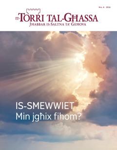 It-Torri tal-Għassa Nru.6 2016   Is-smewwiet—Min jgħix fihom?